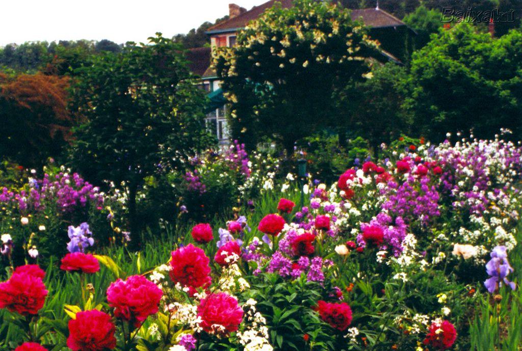 Majestosa f?bula do jardim de flores