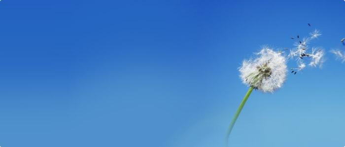 small_wind